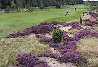 HEELSUM - Airborne 6 met heide. Heelsumse Golf Club. COPYRIGHT KOEN SUYK
