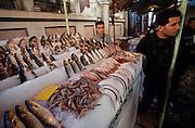 Alexandria. Fishmarket.