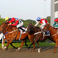 Spice Fair and Sean Levey winning the 7.55 race