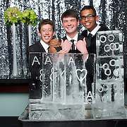 MAGS Ball 2013 -   Ice Sculpture