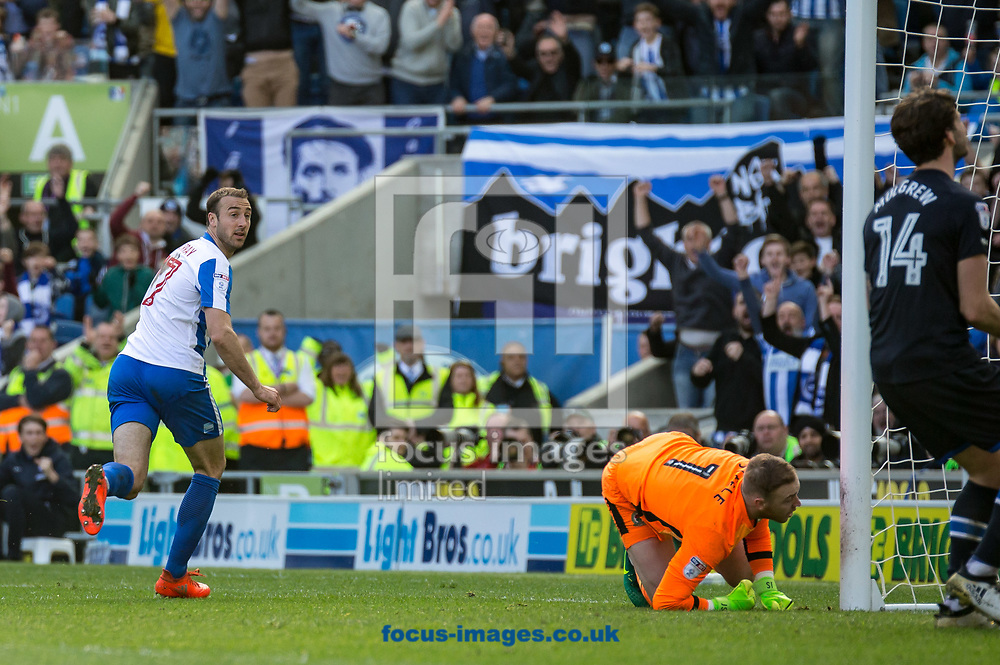 Glenn Murray of Brighton &amp; Hove Albion looks to see his goal and celebrate during the Sky Bet Championship match at the American Express Community Stadium, Brighton and Hove<br /> Picture by Liam McAvoy/Focus Images Ltd 07413 543156<br /> 01/04/2017