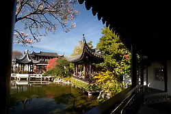 United States, Oregon, Portland, Chinese Garden
