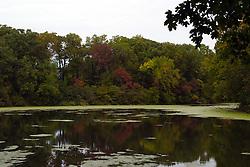 25 September 2012:   Illinois scenery near Oglesby and Ottawa..Matthiessen State Park.  Lake Matthiessen