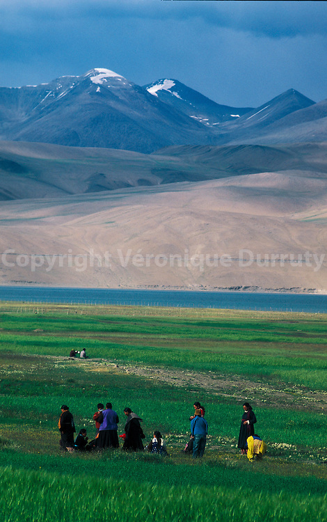 PEASANTS WORKING. TSO MORIRI LAKE, LADAKH, INDIA