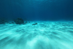 """Light bounces off the sandy bottom at the dive known at """"Jimmy Goes to China"""" at the Rowley Shoals."""