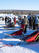 Scenes from the Apostle Islands Sled Dog Race, hosted by the Bayfield Chamber of Commerce, near Bayfield, WI