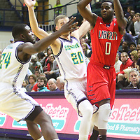 Liberty's David Andow is guarded by UNCW's Addison Spruill, left, and Dylan Sherwood Wednesday December 17, 2014 at Trask Coliseum on the campus of UNCW in Wilmington, N.C. (Jason A. Frizzelle)
