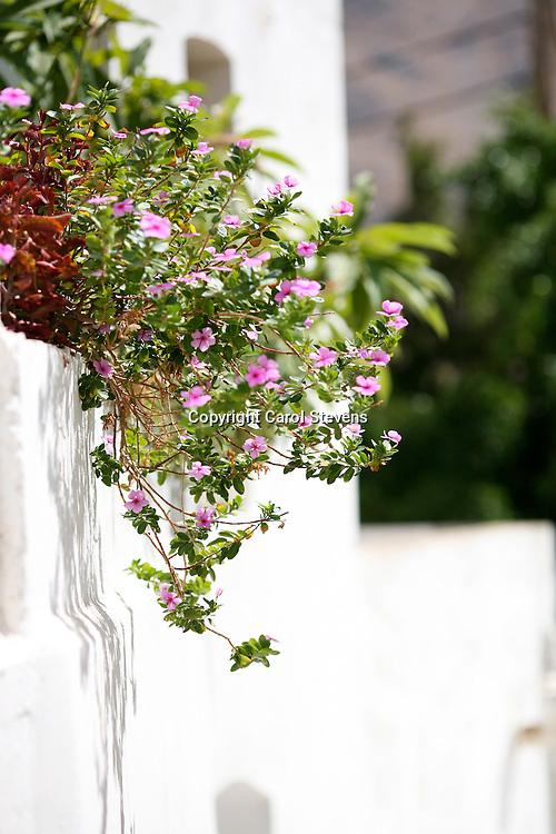 Megalo Horio, Tilos, Dodecanese, Greece