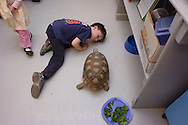 A boy makes friends with a turtle at the Needham Science Center.