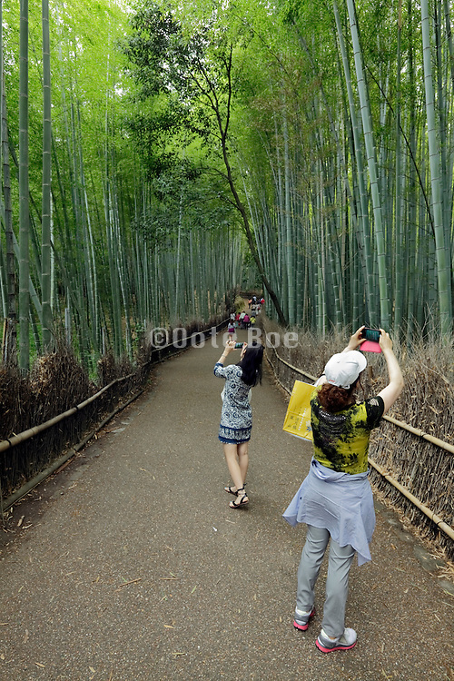 people taking pictures at the bamboo lined path Japan, Honshu, Sagano, Arashiyama