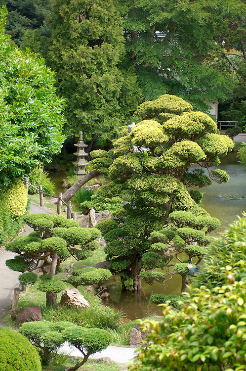 Japanese Tea Garden, Golden Gate Park, San Francisco, California, United States of America