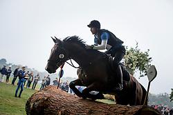 Carp Michail, UKR, Kadanz PKZ<br /> World Championship Young Eventing Horses<br /> Mondial du Lion - Le Lion d'Angers 2016<br /> © Hippo Foto - Dirk Caremans<br /> 22/10/2016