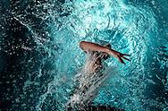 PIROVANO AnnaVittoria Alata Nuoto - Sa<br /> 400 misti femminili<br /> Campionati Italiani Assoluti Nuoto Primaverili<br /> Riccione  Italy 8 - 12/04/2013<br /> Day 03 batterie heats 10 aprile<br /> Photo Giorgio Scala/Deepbluemedia/Insidefoto