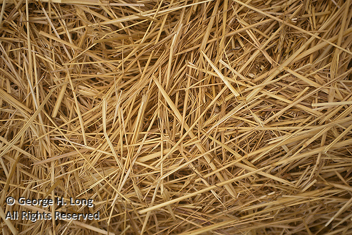 close up of rolled hay bale