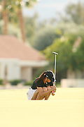 Apr. 1, 2006; Rancho Mirage, CA, USA; Michelle Wie reacts after missing a putt during the 3rd round of the Kraft Nabisco Championship at Mission Hills Country Club. ..Mandatory Photo Credit: Darrell Miho.Copyright © 2006 Darrell Miho .
