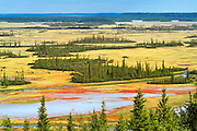 Salt Plain (flats) and boreal forest<br /> Wood Buffalo National Park<br /> Northwest Territories<br /> Canada
