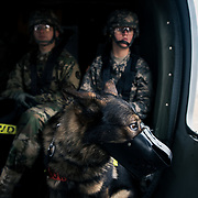"603rd MP Military Working Dog Flight Familiarization with C Co. 2-3 GSAB, ""Dustoff"" 2CAB"