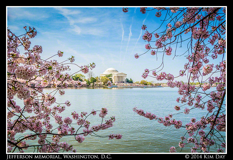 Jefferson Memorial Amid The Cherry Blossoms<br /> Washington, DC<br /> April 13, 2014