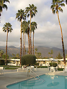 swimming pool palm trees and housing Palm Springs USA