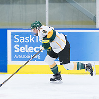 4th year forward Bailey Braden (8) of the Regina Cougars in action during the Women's Hockey home game on October 8 at Co-operators arena. Credit: Arthur Ward/Arthur Images
