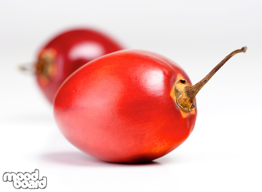 Studio shot of tamarillo fruit