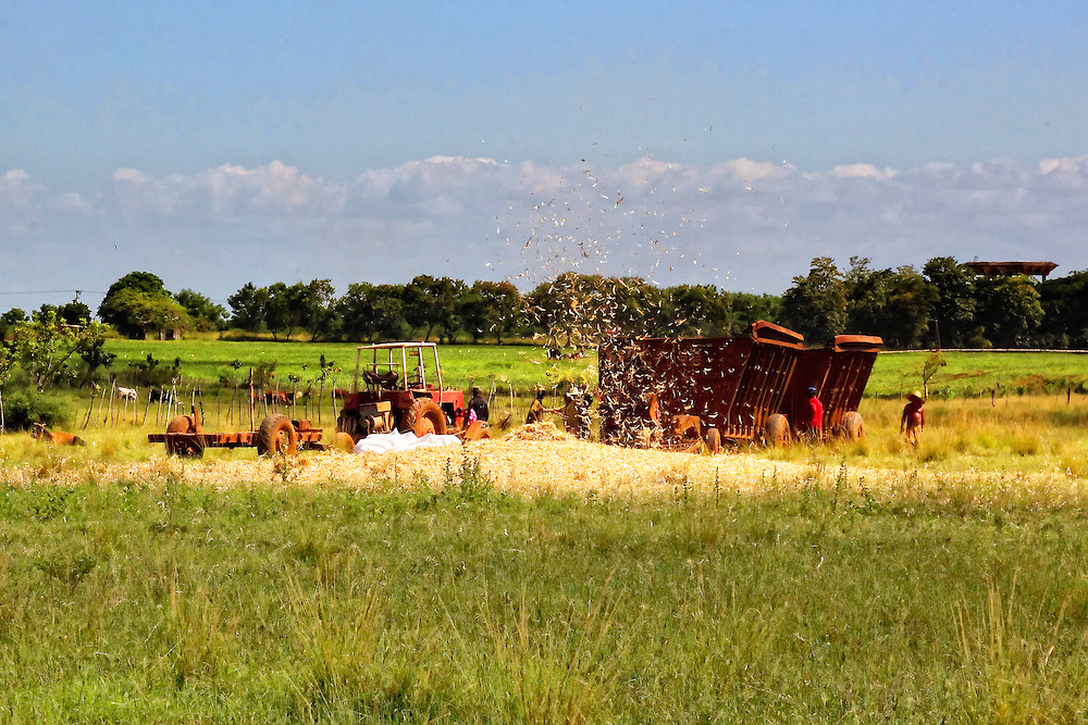 Threshing machine in Melina del Sur, Mayabeque Province, Cuba.