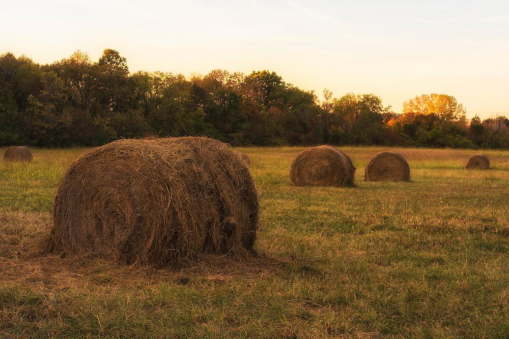 Hay bales at sunset