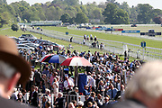 The horses go down to post for the The British Stallion Studs EBF Novice Stakes over 5f (£20,000)   during the first day of the Dante Festival at York Racecourse, York, United Kingdom on 15 May 2019.