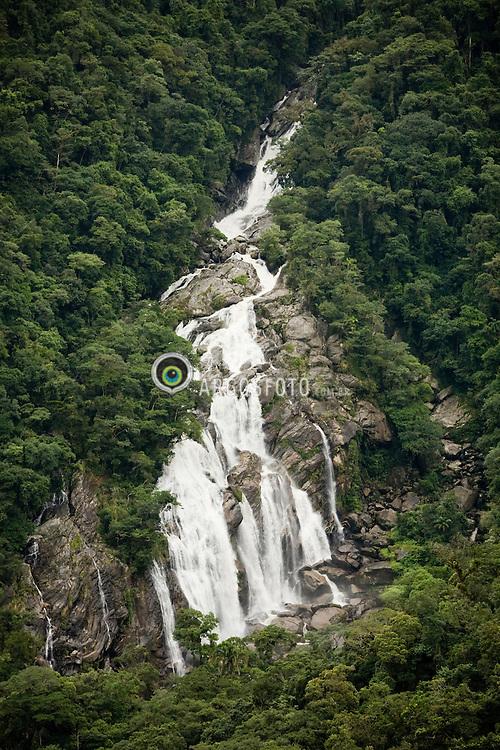 Mata Altlantica com cachoeira no Parque Estadual da Serra do Mar, considerado Patrimonio da Humanidade pela Unesco.  / The Atlantic Forest (Mata Atlântica in Portuguese) is still among the biologically richest and diverse forests in the world.