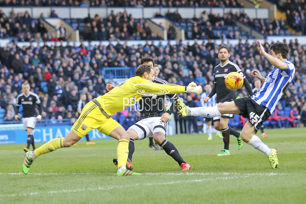 Brentford goalkeeper David Button  gets to ball ahead of Sheffield Wednesday striker Fernando Forestieri  during the Sky Bet Championship match between Sheffield Wednesday and Brentford at Hillsborough, Sheffield, England on 13 February 2016. Photo by Simon Davies.
