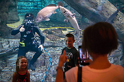 MILWAUKEE (Aug. 7, 2018) Navy Diver 2nd Class David Purkey, assigned to assigned to Explosive Ordnance Disposal Group (EODGRU) 2, gives a thumbs-up during a photograph with children at Discovery World Science and Technology Center during Milwaukee Navy Week. The Navy Office of Community Outreach uses the Navy Week program to bring Navy Sailors, equipment and displays to approximately 14 American cities each year for a week-long schedule of outreach engagements designed for Americans to experience firsthand how the U.S. Navy is the Navy the nation needs. (U.S. Navy photo by Mass Communication Specialist 1st Class Ryan J. Batchelder/Released)180807-N-EH218-0078