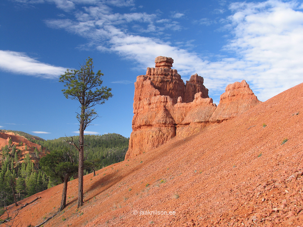 Red Canyon, Next to Scenic Byway 12, Utah, USA
