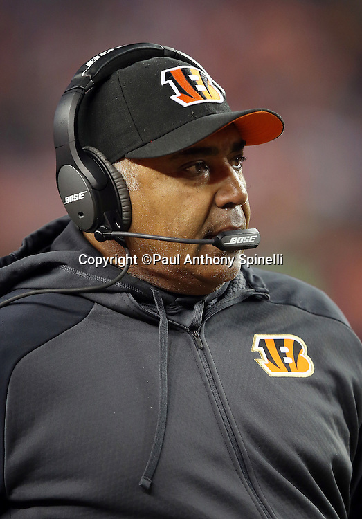 Cincinnati Bengals head coach Marvin Lewis looks on from the sideline during the 2015 NFL week 16 regular season football game against the Denver Broncos on Monday, Dec. 28, 2015 in Denver. The Broncos won the game in overtime 20-17. (©Paul Anthony Spinelli)