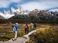 NATIONAL PARK LOS GLACIARES, ARGENTINA - CIRCA FEBRUARY 2019: Backpackers hiking in the National Park los Glaciares in Argentina.
