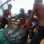 Joseph is 17 and works like his father did on the sea as a fisherman. The catch of the day is hauled in by the entire crew to be sorted out on deck and taken straight to the market in Hinigaran. The catch that day made the crew $12.00 each( Captain Joan $24.00) One day a week Joseph goes to Alternative Learning schooling provided by Quidan-Kaisahan.  Quidan-Kaisahan is a charity working in Negros Occidental in the Philippines. Their aim is to keep children out of work to secure them education.