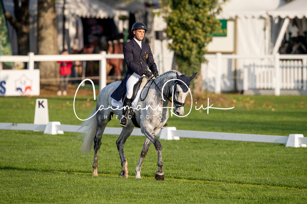 Van Winkel Steve, BEL, Glenkeeran Casanova<br /> Mondial du Lion - Le Lion d'Angers 2018<br /> © Hippo Foto - Dirk Caremans<br /> 18/10/2018