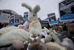 Scottish animal campaign charity OneKind delivers 129 hand-made mountain hares to the Scottish Parliament, one for each of the MSP's, to raise awareness of the culling and hunting of Scotland's mountain hare population.