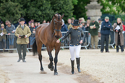 Hankey Dee, (GBR), Chequers Playboy<br /> First Horse Inspection - Mitsubishi Motors Badminton Horse Trials <br /> Badminton 2015
