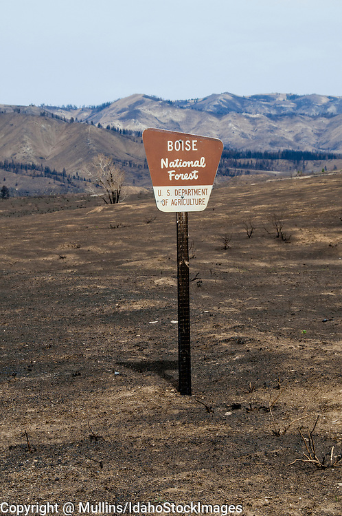 Forest Service sign one month after Elk Complex fire in August, 2013 in Elmore County Idaho