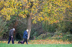 ©Licensed to London News Pictures 02/11/2019.<br /> Sidcup,UK. A bright autumnal weather morning today at Footscray Meadows in Sidcup, South East London. Wind and rain is expected later in the day. Photo credit: Grant Falvey/LNP