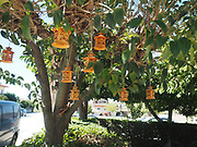 amulets on a tree for good luck in Thasos, Greece