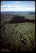 Aerial view of endless expanse of green of Amazon jungle in month of June; north of Manaus. Brazil