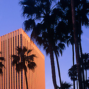 Office building in downtown Phoenix, Arizona. Late afternoon golden light on the building which is surrounded by silhouettes of palm trees.