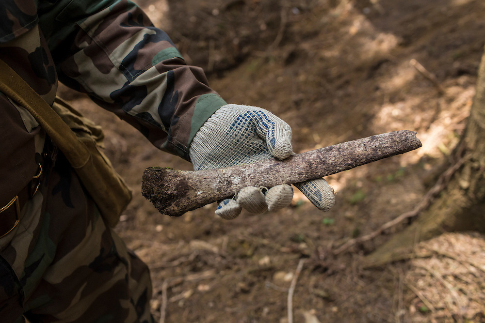 SKOLE, UKRAINE - MAY 1, 2015: Volodymyr Kharchuk, deputy director of the organization Dolya, holds a human tibia at the site of a World War II-era mass grave believed to contain the remains of Ukrainian partisans where the bone was found, along with others, in Skole, Ukraine. Dolya was formed to excavate and repatriate remains from World War II, though its focus is often on locating the graves of Ukrainian partisans killed by Soviet forces. CREDIT: Brendan Hoffman for The New York Times