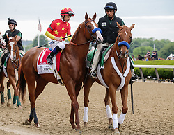 June 9, 2018 - Hempstead, NY, U.S. - HEMPSTEAD, NY - JUNE 09: Justify, ridden by Jockey Mike Smith, is pictured prior to the 150th running of the Belmont Stakes on June 9, 2018 at Belmont Park in Elmont, NY. (Photo by Joshua Sarner/Icon Sportswire) (Credit Image: © Joshua Sarner/Icon SMI via ZUMA Press)