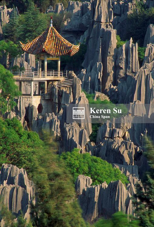Landscape of limestone pillars, Stone Forest, near Kunming, Yunnan Province, China