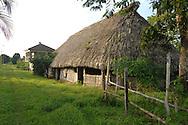 Thatched hut in Barranco Village, Belize..Garafuna Village near Sarstoon-Temash National Park