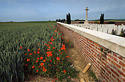 Somme Battlefield, France. Poppies on the Somme Battlefield at Rancourt.<br />Poppies grow in the shadow of the Sword of Sacrifice which stands in Rancourt Military cemetery one of the many hundreds of Commonwealth War Graves Cemeteries ( CWGC ) on the Somme battlefields of northern France. An unexploded shell from WW1 is placed by the cemetery wall awaiting collection by French Army Bomb squad.<br />Rancourt was captured by the French on 24 September 1916, and remained in Allied hands until 24 March 1918 and the German advance. It was recaptured by the 47th (London) Division on 1 September 1918.<br /><br />The cemetery was begun by units of the Guards Division in the winter of 1916-17, and used again by the burial officers of the 12th and 18th Divisions in September 1918. After the Armistice, six graves from the surrounding battlefields were brought into Row E.<br /><br />Rancourt Military Cemetery contains 93 burials and commemorations of the First World War. 20 of the burials are unidentified but there is a special memorial to one casualty known to be buried among them. There are also three Second World War burials in the cemetery.<br /><br />The Battle of the Somme (French: Bataille de la Somme, German: Schlacht an der Somme), also known as the Somme Offensive, was a battle of the First World War fought by the armies of the British and French empires against the German Empire. It took place between 1 July and 18 November 1916 on both sides of the River Somme in France. It was one of the largest battles of World War I, in which more than 1,000,000 men were wounded or killed, making it one of the bloodiest battles in human history.  The main part of the offensive was to be made by the French Army, supported on the northern flank by the Fourth Army of the British Expeditionary Force (BEF).<br />When the German Army began the Battle of Verdun on the Meuse on 21 February 1916, many French divisions intended for the Somme were diverted and the supporting attack by the