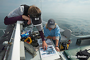 New England Aquarium researcher Heather Pettis and senior scientist Dr. Moira Brown look through a right whale catalogue to match a sighted whale aboard the NEAq research vessel Nereid in the Bay of Fundy, Canada ( North Atlantic Ocean )