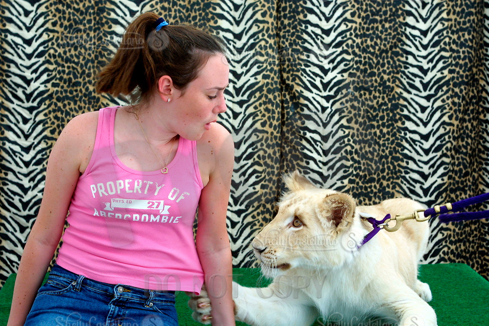 Apr 03, 2002; Lake Elsinore, CA, USA; Visitor gets a hand from a white lion @ Tiger Creek, a non-profit organization dedicated to the conservation of endangered wildcats. <br />Mandatory Credit: Photo by Shelly Castellano/ZUMA Press.<br />(&copy;) Copyright 2002 by Shelly Castellano